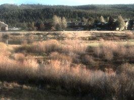 Big Sky Meadow